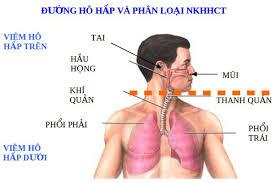 Mùa lạnh cảnh giác với viêm đường hô hấp trên