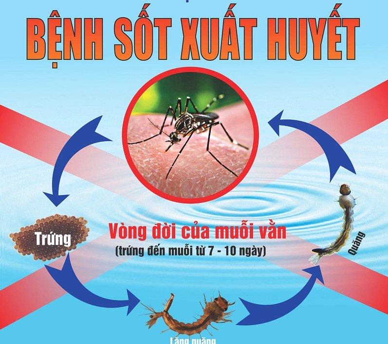 Ngành y tế Vĩnh Thạnh chỉ đạo các Trạm y tế cơ cở đẩy mạnh công tác phòng, chống bệnh sốt xuất huyết